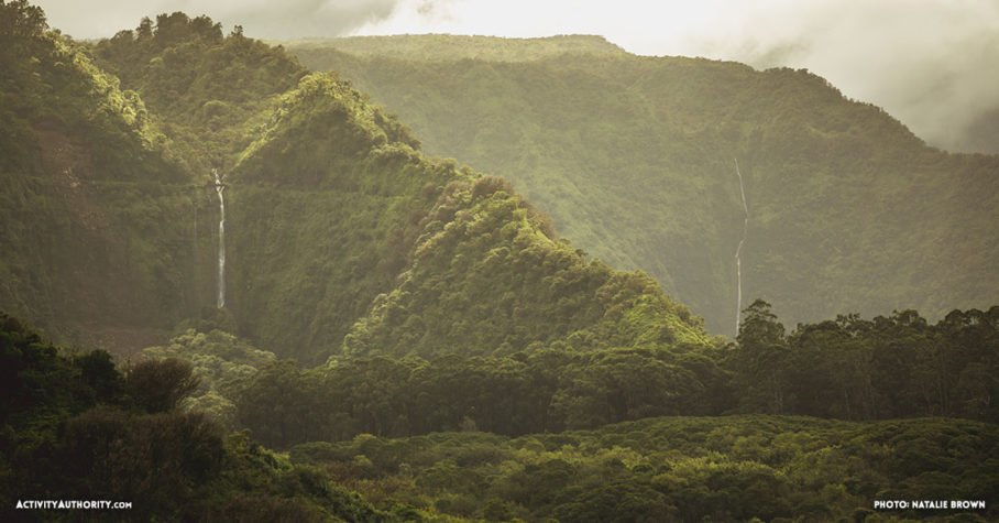 rainforest in Hana Maui